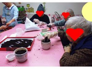 看大圖:手工DIY-園藝活動(另開新視窗)