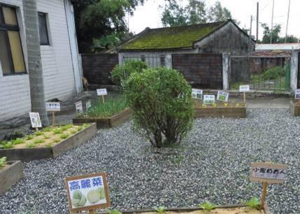 看大圖:圓融銀髮菜園(健康有機天地)(另開新視窗)